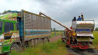 อาสาไทยยืนยัน Thai Reference ปราจีนบุรี เกษตรกรเมินราคาข้าวนาปรัง
