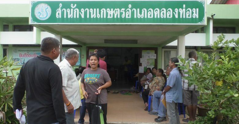 อาสาไทยยืนยัน Thai Reference ชาวสวนปาล์มกระบี่เฮ เงินชดเชยประกันรายได้ปาล์มเข้าแล้ว!! แต่บางรายผิดหวัง