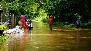 อาสาไทยยืนยัน Thai Reference พัทลุง น้ำป่าหลากท่วมหลังฝนตกหนัก