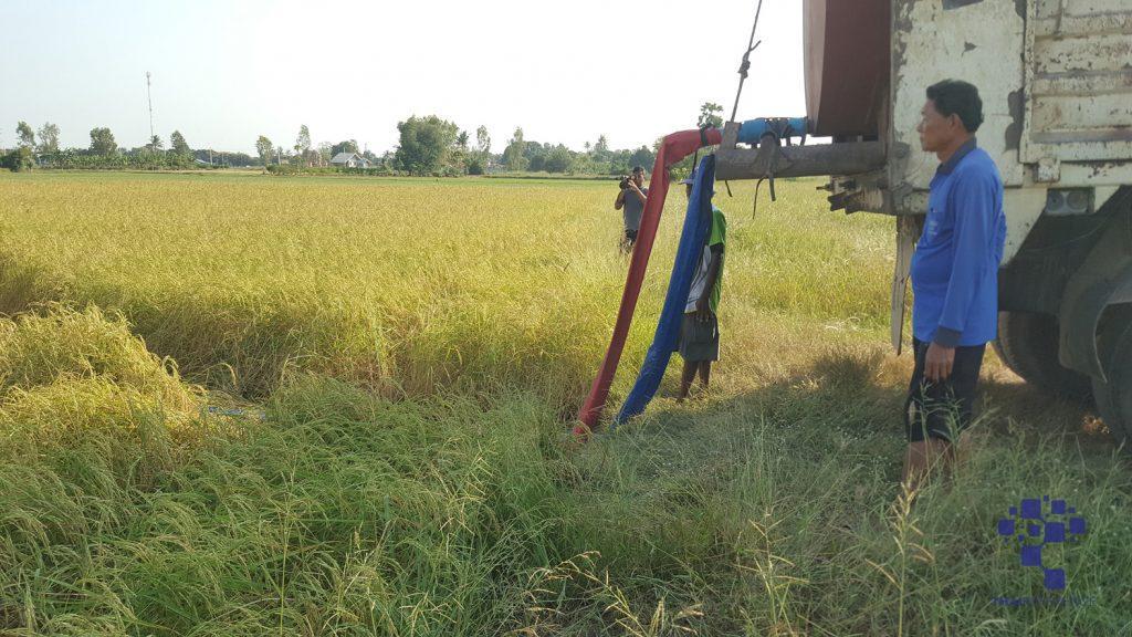 อาสาไทยยืนยัน Thai Reference สุพรรณบุรี ภัยแล้งนาข้าวขาดน้ำชาวนาต้องซื้อน้ำใส่นาข้าว